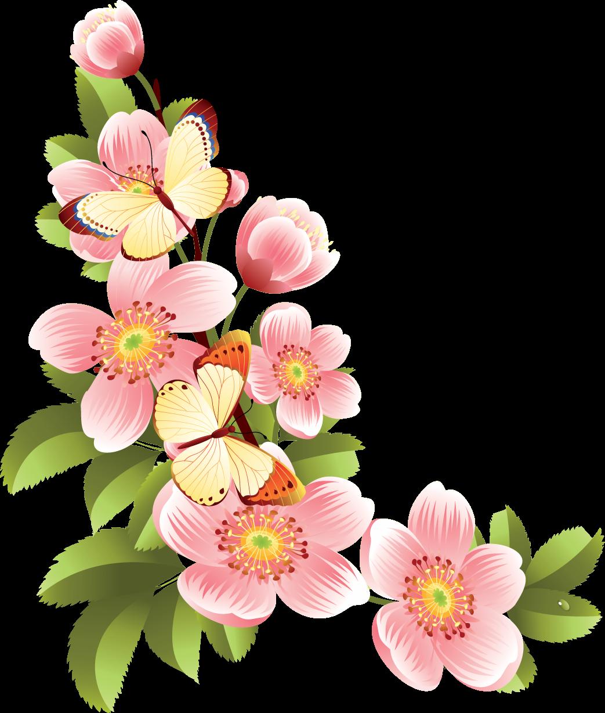 весенние цветы картинки для оформления острове пасхи