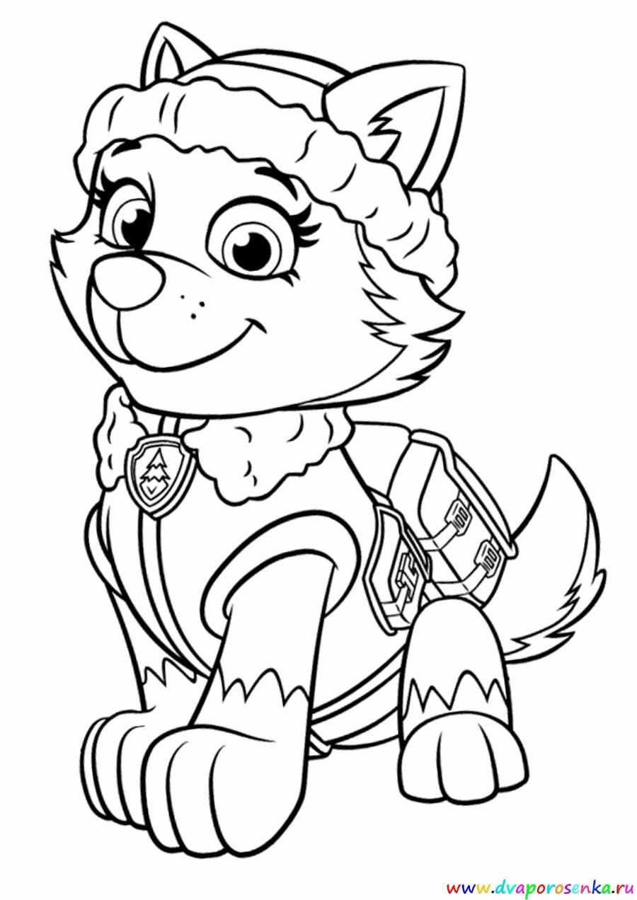 Раскраска щенячий патруль трекер и эверест