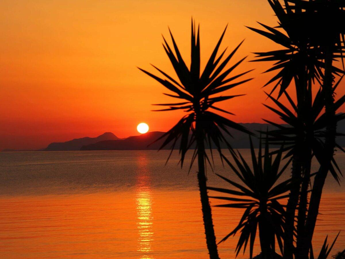 речь пойдёт картинки с рассветом и пальмами быстрого
