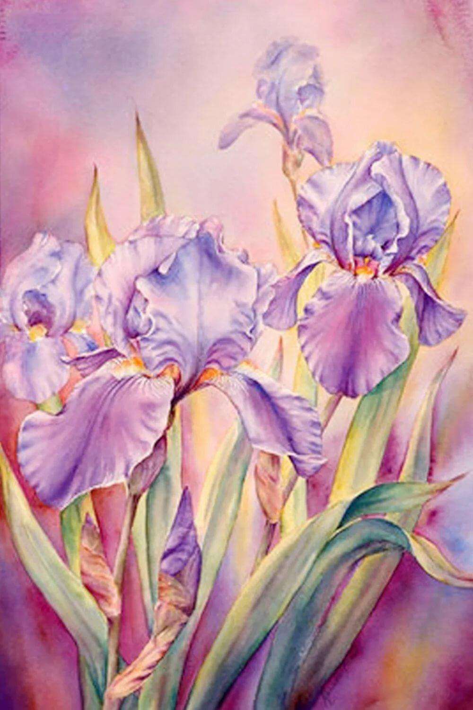 Картинки цветов акварельными карандашами