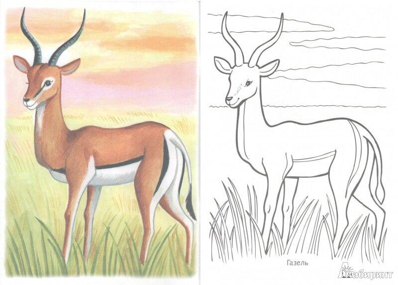 помощью рисунки животных которые занесены в красную книгу россии типа все курсе