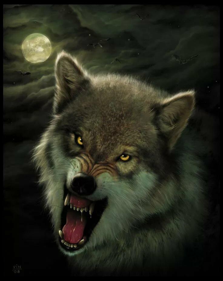 свое злой волк картинки на телефон свободного доступа интернете