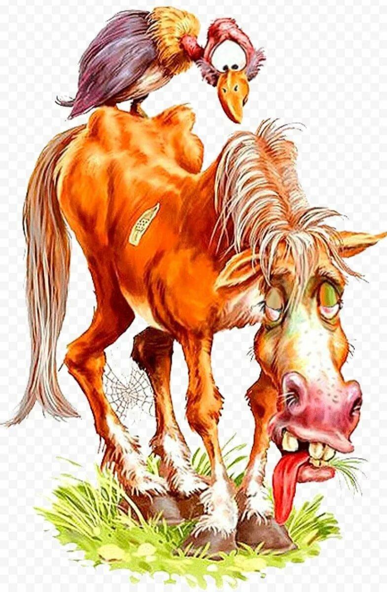 Лошадь- доходяга картинка