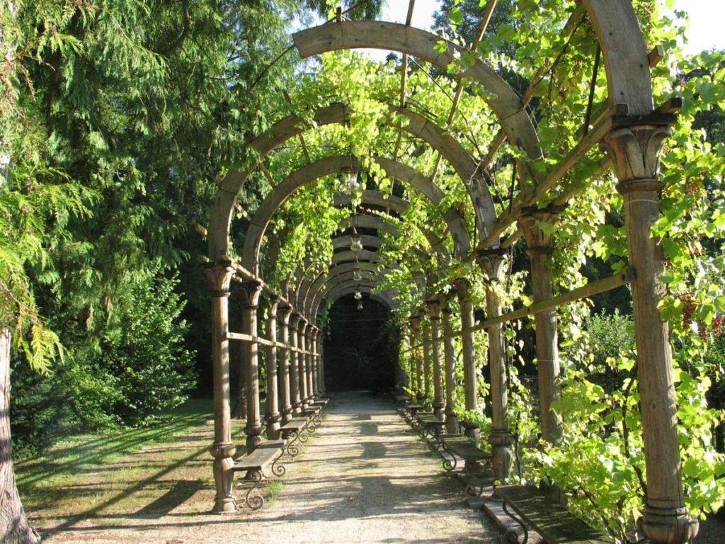 виноградные арки фотогалерея деревенский стиль