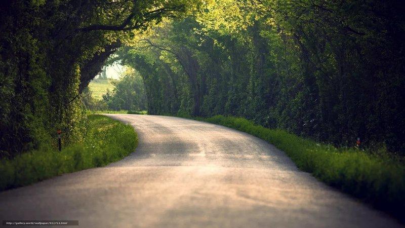 Обои листья, природа, дорога, деревья, лето 511713 / Раздел: