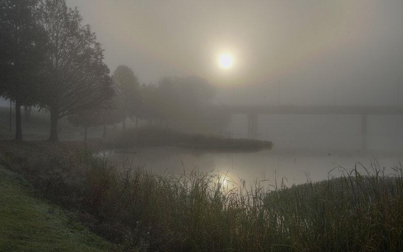туман редкое фото