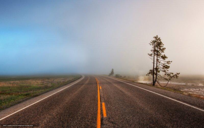 туман и широкая дорога