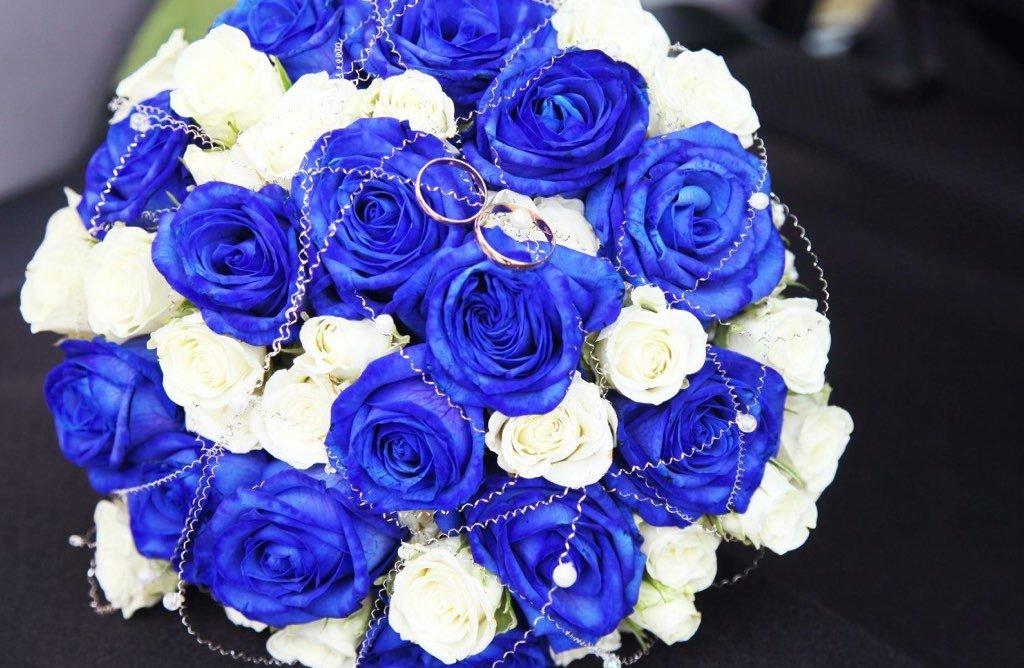 подробно рассказывает букет из синих роз картинки красивые чеснок