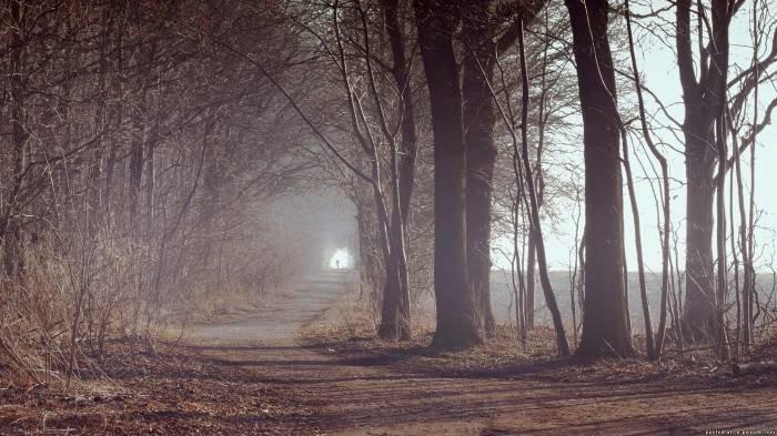 Дорога в туманной дымке