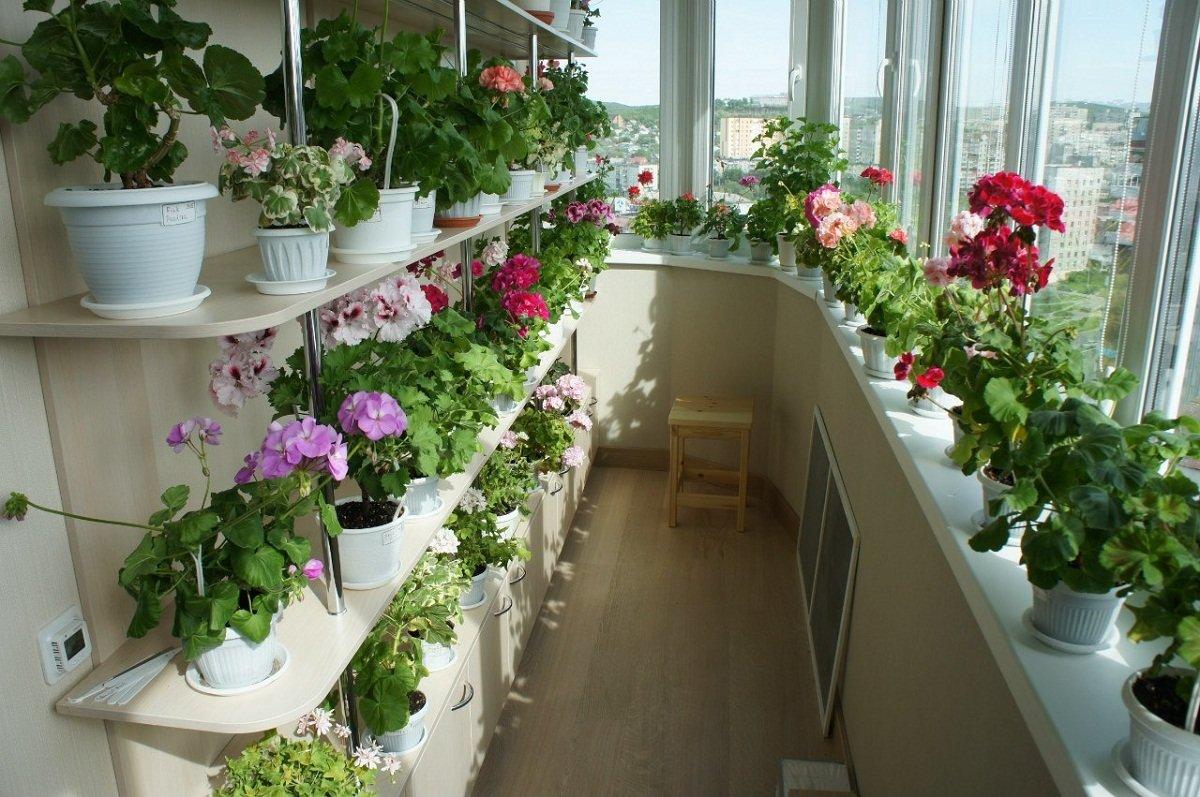 Цветы на балконе – это и красиво и функционально.