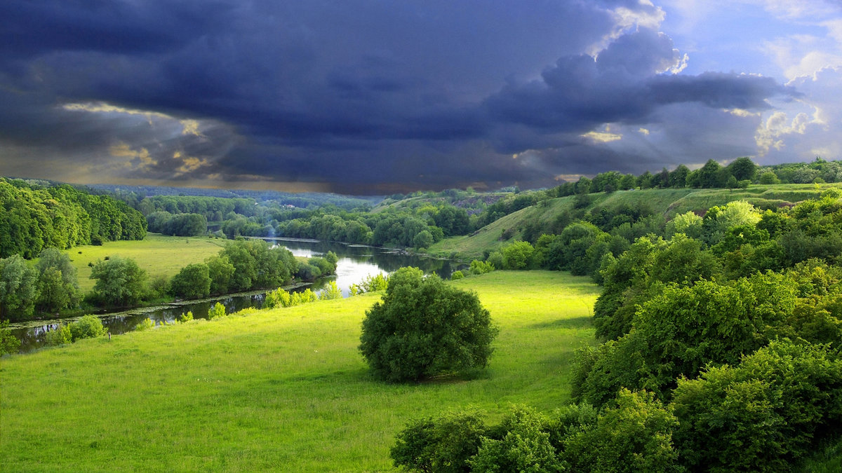 download 1600x900 green summer nature scenery wallpapers hd for