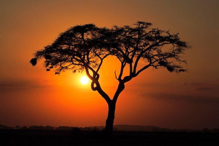 Закат в Африке