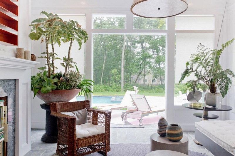 Комнатные растения в белоснежном интерьере гостиной с панорамными окнами