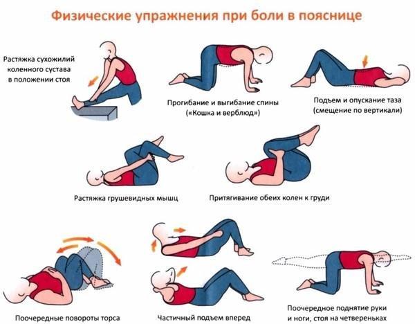 Гимнастика для спины при болях позвоночника