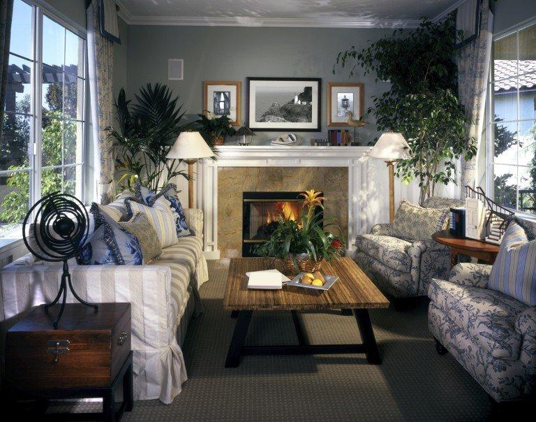 Комнатные растения в интерьере квартиры способствуют созданию комфортных условий отдыха