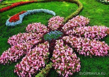 Клумба в виде цветка фото