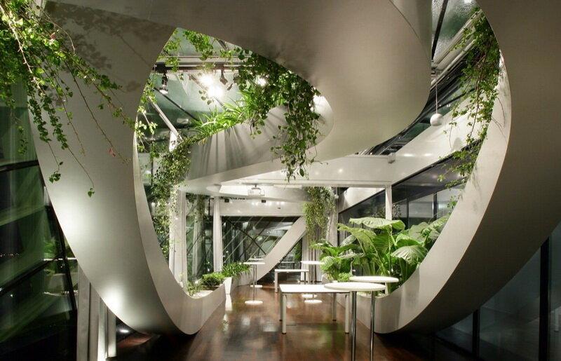 Комнатные растения не только украшают интерьер, но и приносят огромную пользу: очищают воздух от углекислого газа