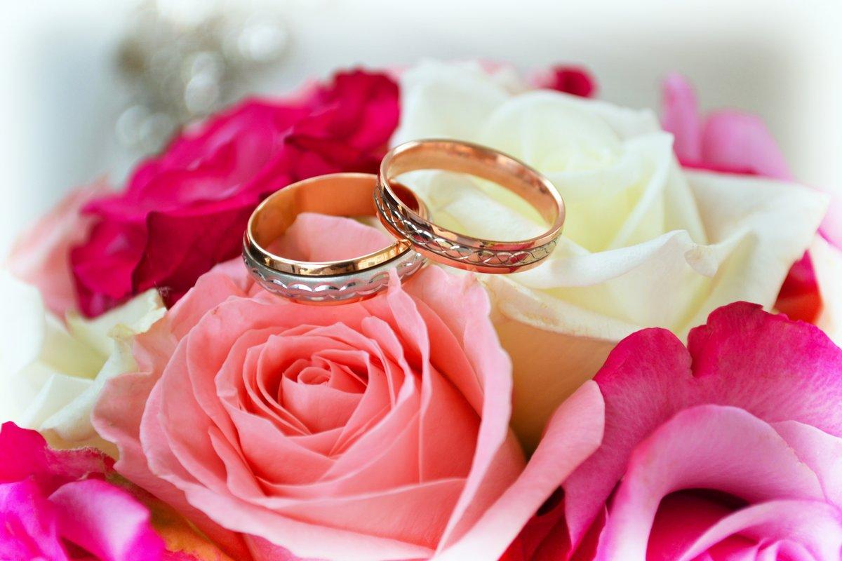 Картинка с обручальными кольцами и цветами