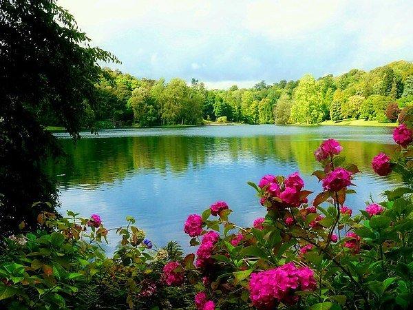 лето прекрасное озеро светло