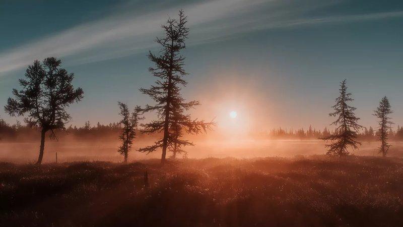 Рассвет на Ямале