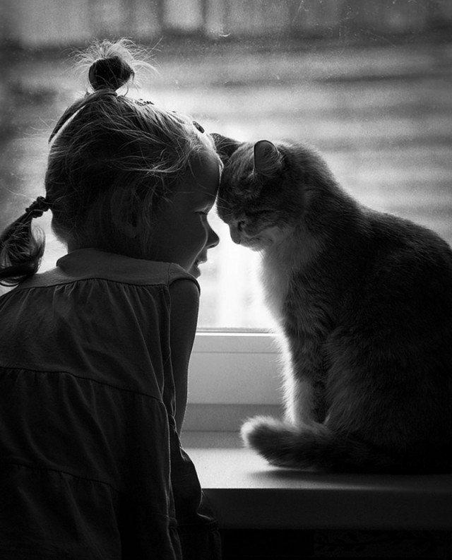 Жалостливые картинки о любви