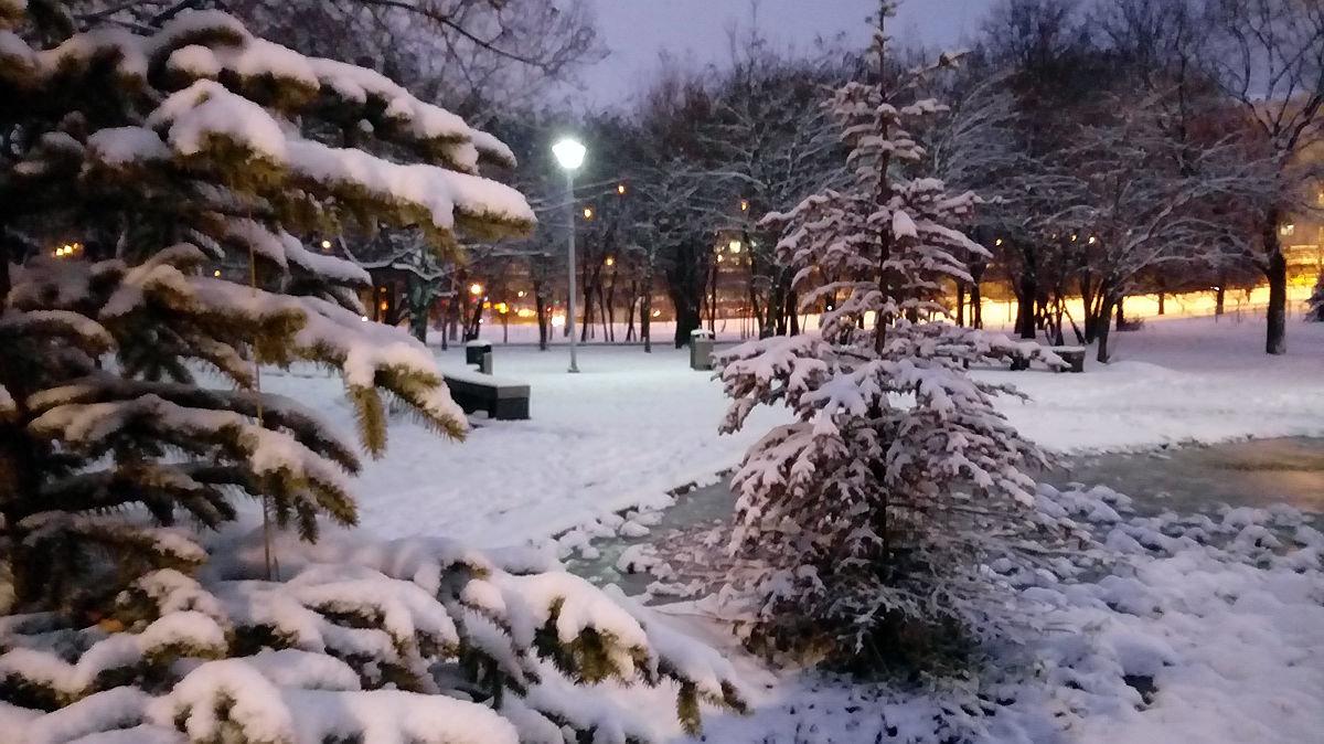 лучшая зима на бульварах москвы фото для тех, кто