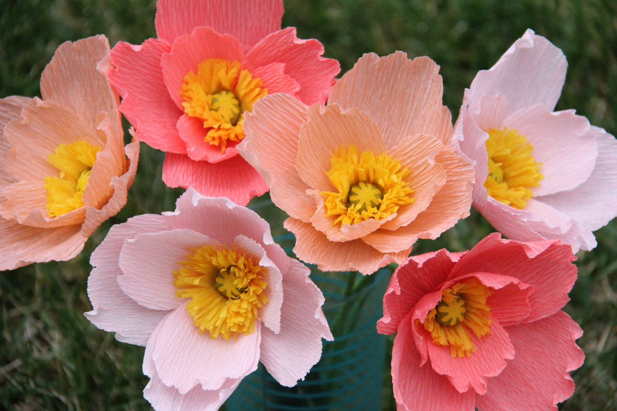 Paper Flowers To Buy Stonewall Services