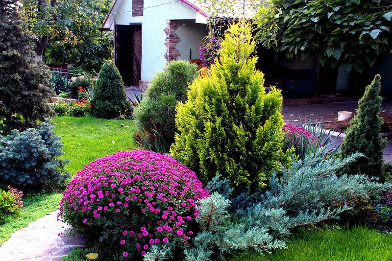 Ландшафтный дизайн — «Floris» студия ландшафтного дизайна (г ... Ландшафтный дизайн г.