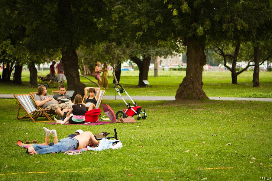 Отдых в парке картинка