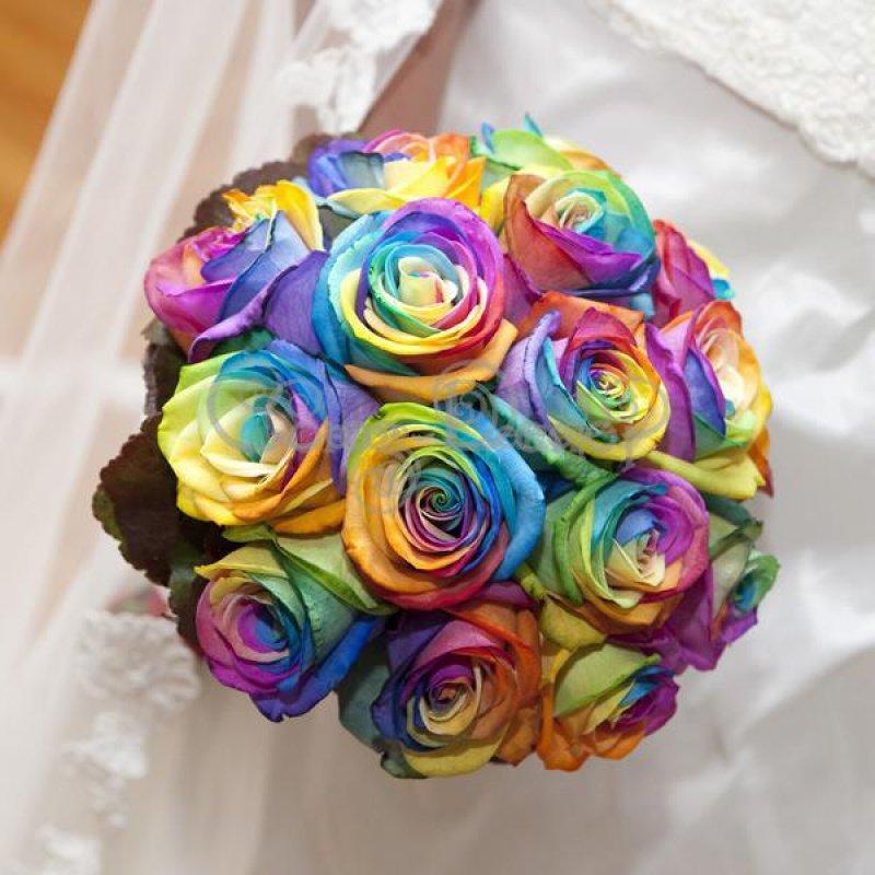 радужный букет цветов картинки