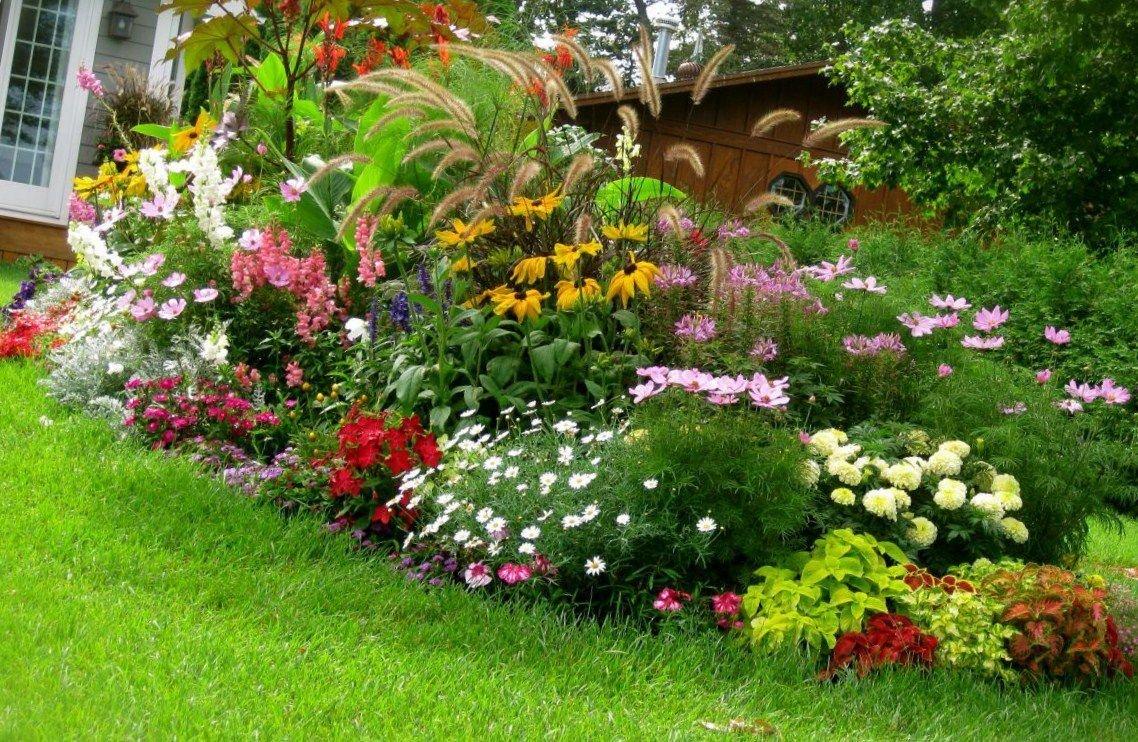 правильно самые красивые цветый двора частного дома фото принёс