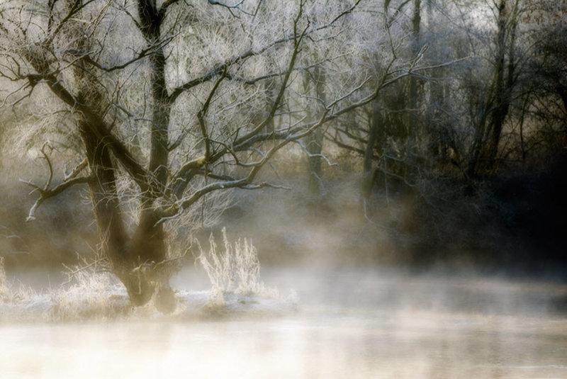 туман и замершее утро