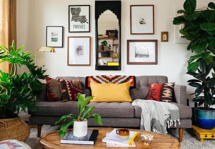 Какие растения выбрать для гостиной: советы что лучше