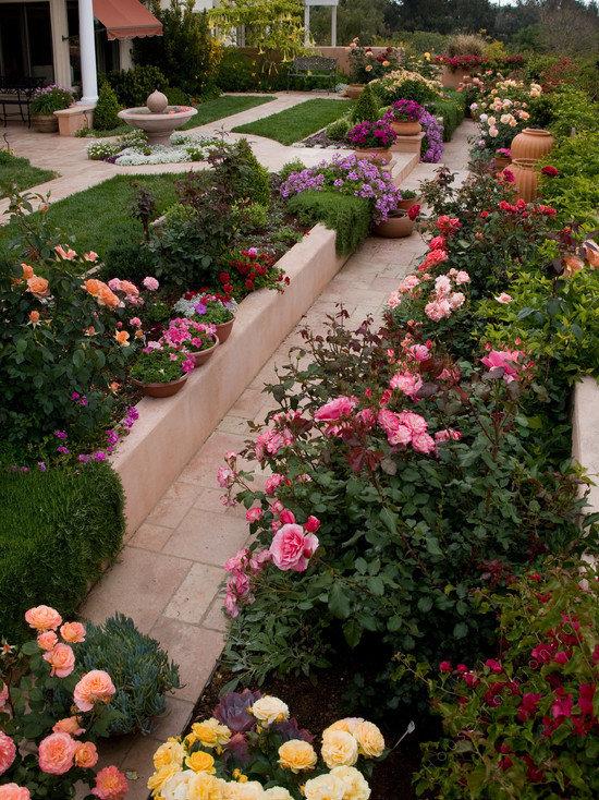 Идеи ландшафтного дизайна с розами