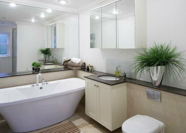 Сегодня модно располагать комнатные цветы даже в ванной комнате.