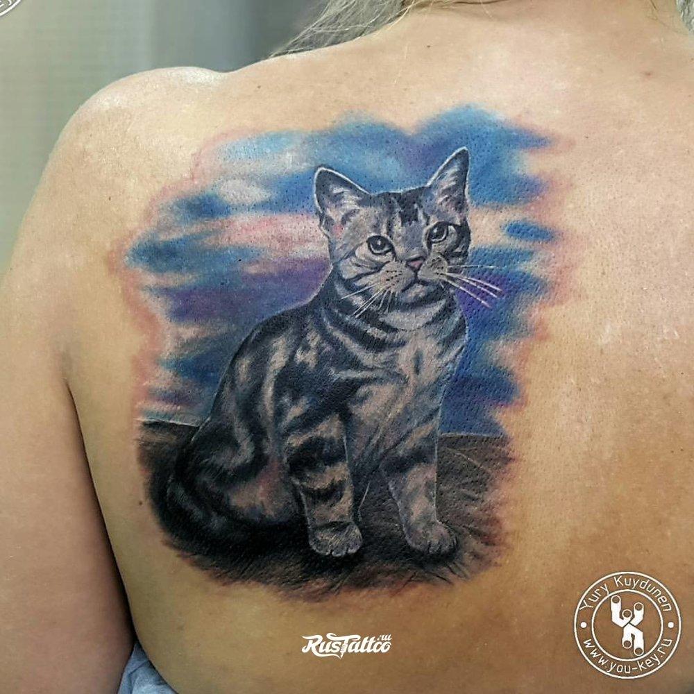 Татуировка кошки на лопатке фото 8