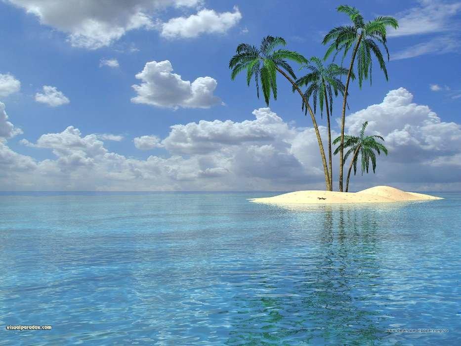 Картинки остров анимации