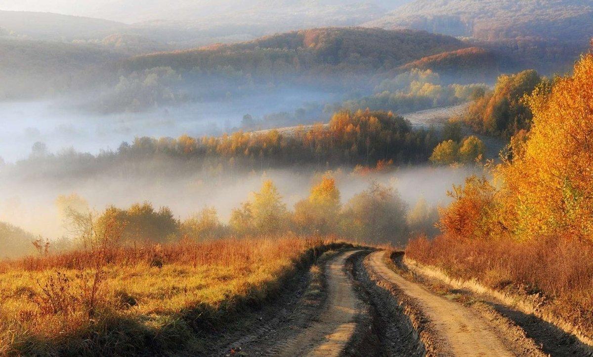 золотая осень в тумане