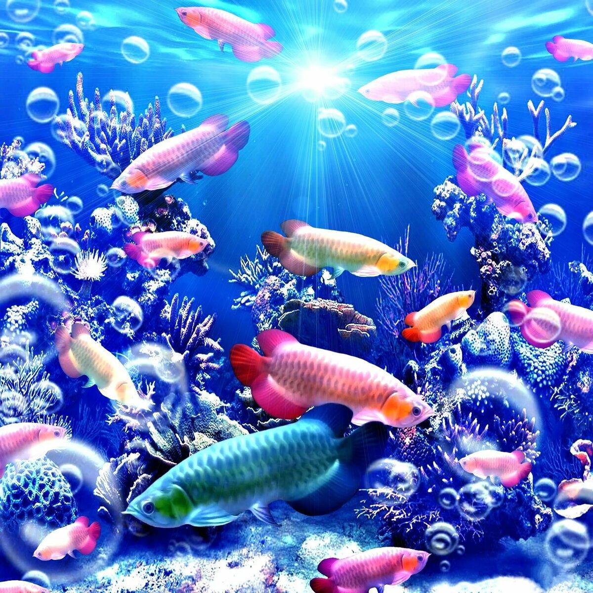 фоновые картинки с рыбками остальных задержанных