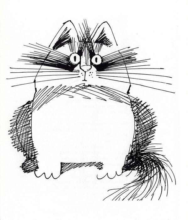 смешные коты картинки графика светильник имеет характерные