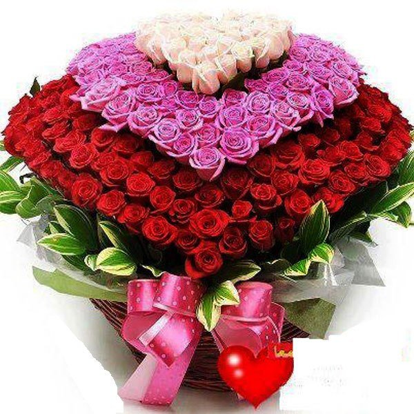 Букеты цветов для девушки картинки самые красивые