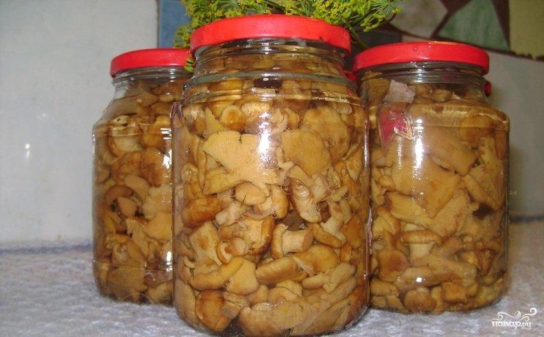 Лисички маринованные рецепты приготовления с фото