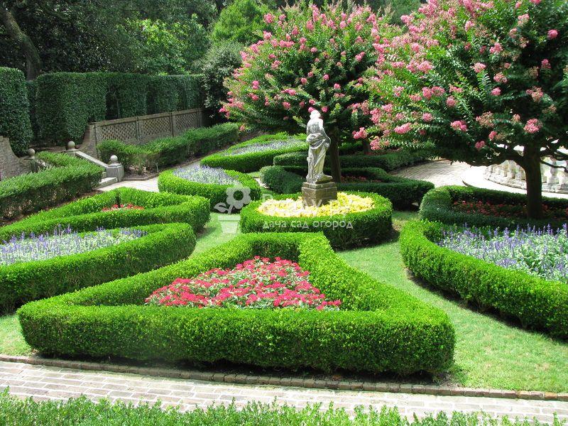 красивый сад фото своими руками