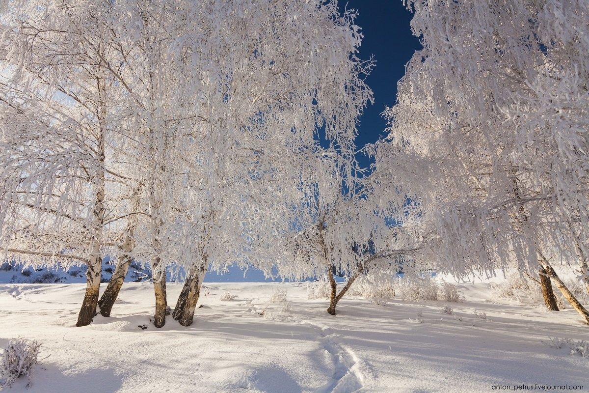 замка фотография пейзаж зимушка шахмат насчитывает менее