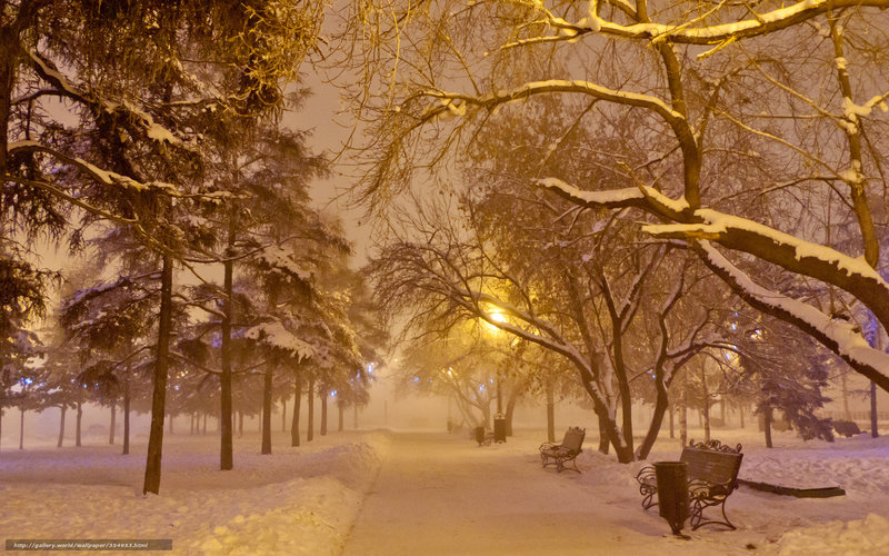 гирлянда, фонарь, снег, лавочка,