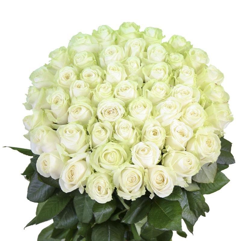Белые розы открытка с др