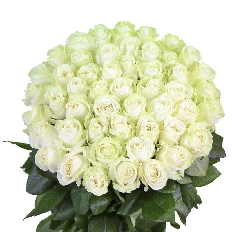 картинки с юбилеем белые розы первый