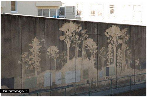 «Обратное граффити» - делаем стены чище!
