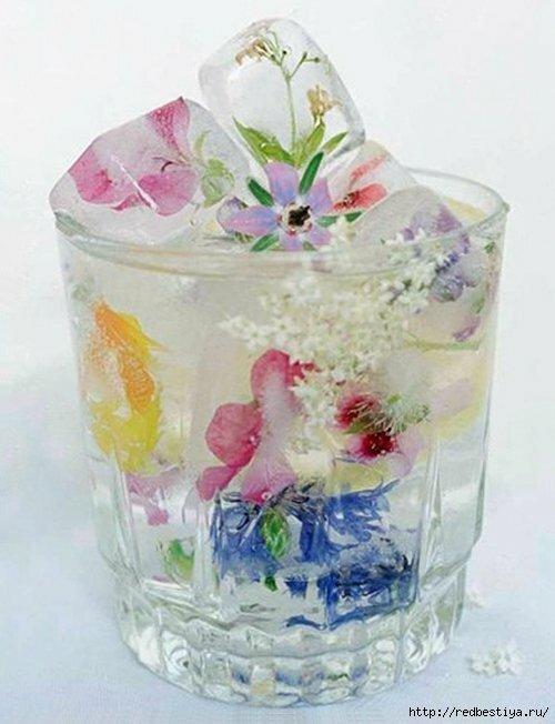 Цветок замороженный в стакане