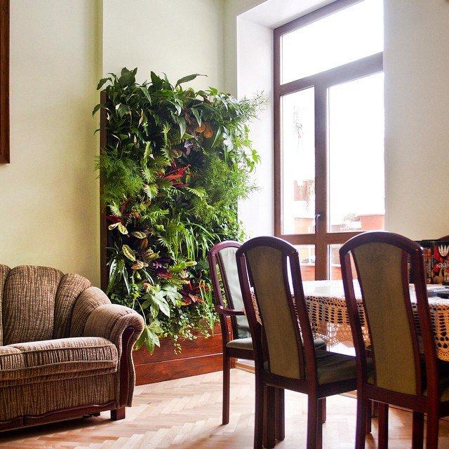 Комнатные растения – кусочек природы в интерьере - 77 фото приеров